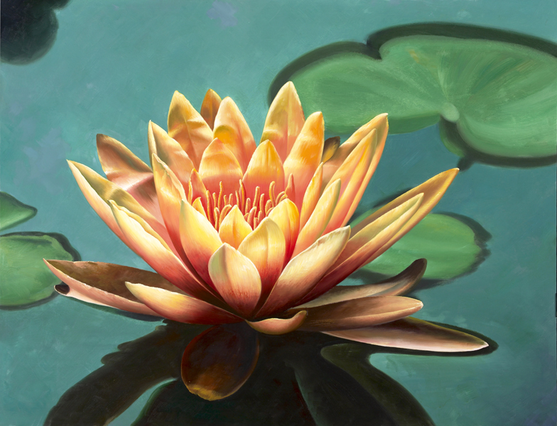 mandalasthe art of paul heussenstamm, Beautiful flower